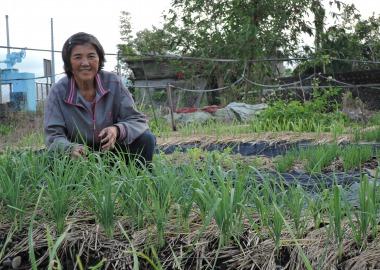 游媽媽悉心照顧的菜園