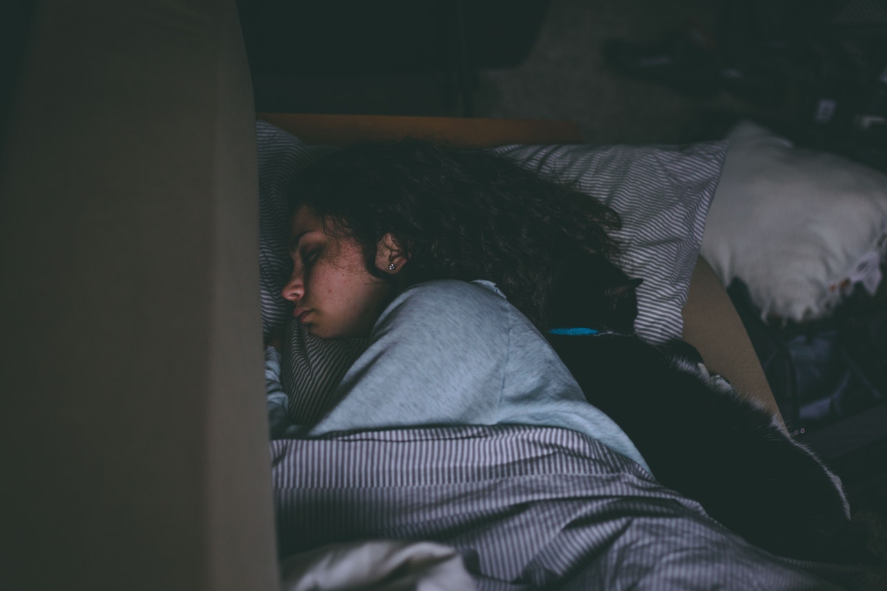 asleep-bed-cat-1497855.jpg